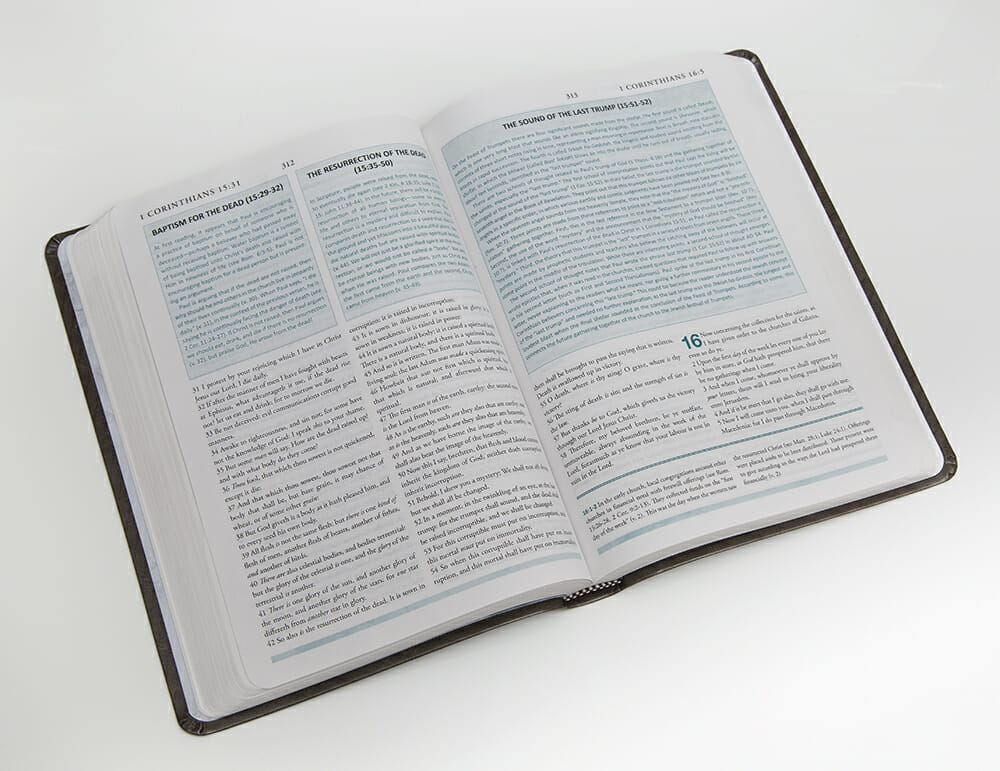 New Testament Study Bible-3549